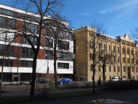 Schönhauser Allee 22, Berlin 2010-2013
